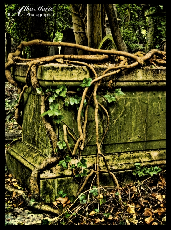 London - eerie Highgate Cemetery, England Dracula inspiration